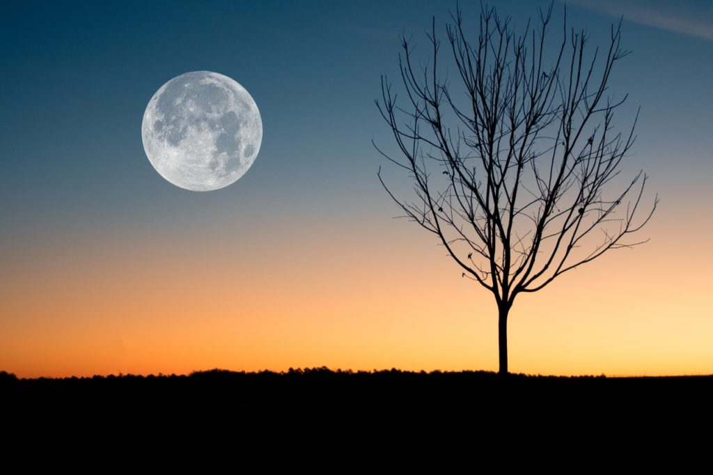 What would the earth be like without the moon?